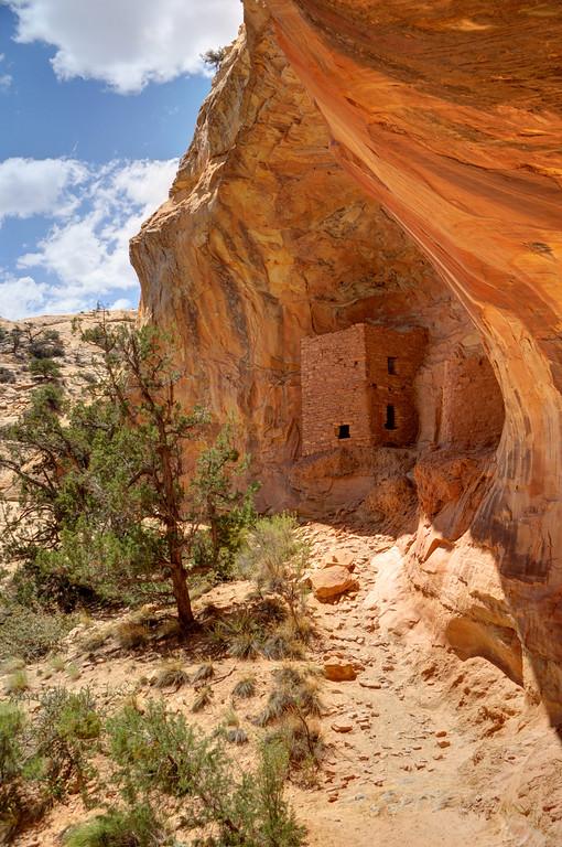 Tower Anasazi Indian Ruins - Comb Ridge - Utah