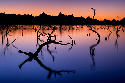 Sunrise over Topock Marsh and the Needles,  Colorado River, Arizona