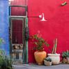 Painted Historic Doorway and Building - Barrio Historico - Tucson, Arizona
