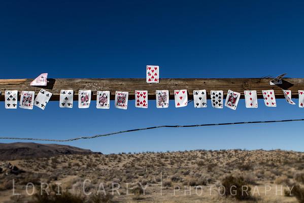 Target practice in the desert