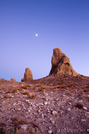 Jupiter and Tufa, Trona Pinnacles
