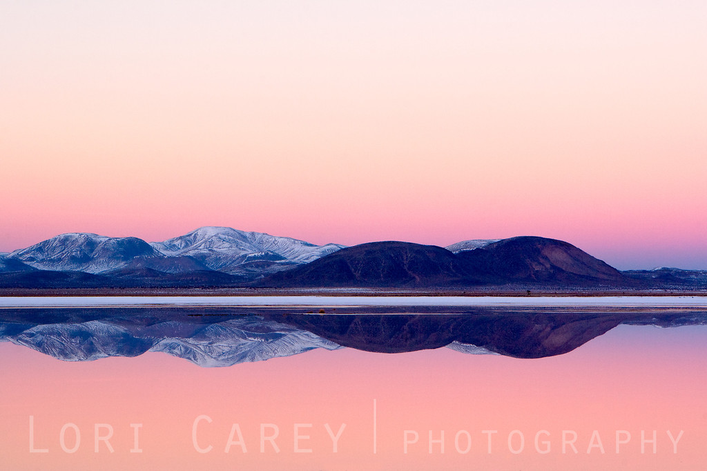 Snow-covered mountains reflected in East Superior Dry Lake in the Mojave Desert. This is usually a playa (a dry lake bed). A major winter storm brought snow to the Mojave Desert and turned the playa into a reflecting pool, creating this once-in-a-lifetime scene.