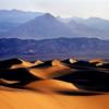 Desertscapes :