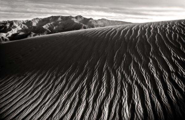 Desert Wave*