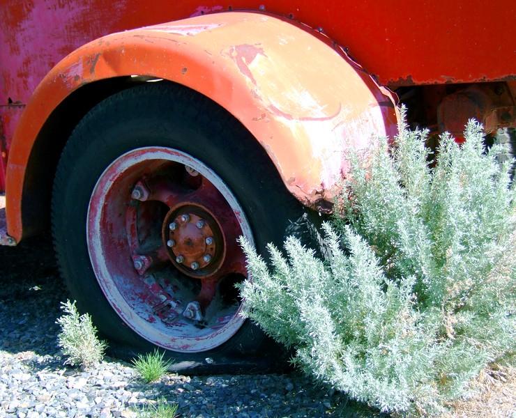 Pick Up and Tumbleweed