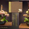 #6 - Left Design $110          Right Design   $175
