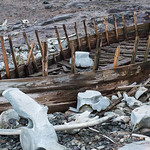 Boat and Bones, Mikkelsen Harbor