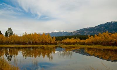 Fall Colours, British Columbia, Canada, 2007
