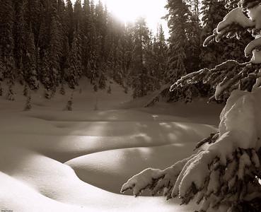 Elk Pass, Kananaskis Country, Alberta, Canada, 2006