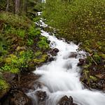 Wahkeena Falls and Creek