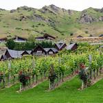 Bald Hills Winery
