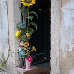 Sunflower Doorway