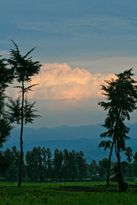 Land of a Thousand Hills, Volcano National Park, Rwanda, 2007