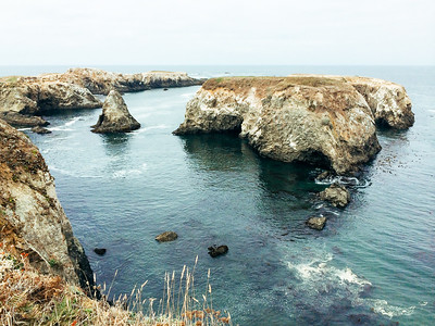 Rugged coastline