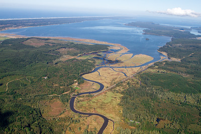 Aerial view of a river delta