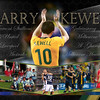 Harry Kewell collage