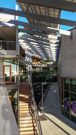 J. Craig Venter Institute - Central Courtyard