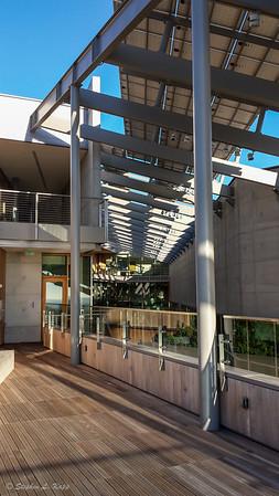 J. Craig Venter Institute - Deck & Central Courtyard