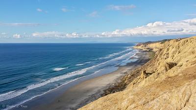 Torrey Pines State Beach - North