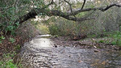 San Clemente / Rose Canyon Creek