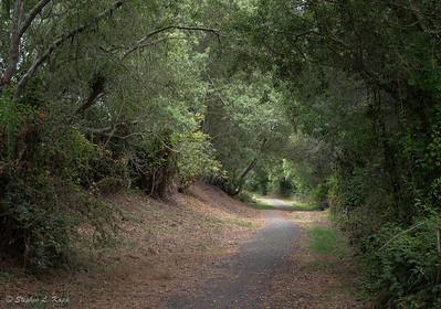 Santa Rosa Creek Trail West