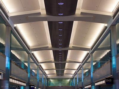 Terminal Ceiling Architecture