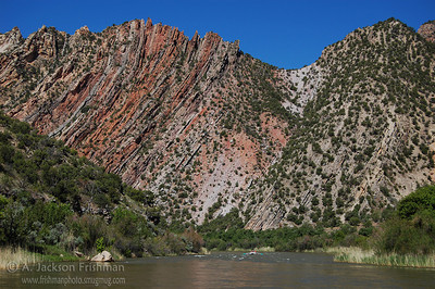 The Mitten Park Fault, bending horizontal strata to the vertical, seen from lower Lodore Canyon, Dinasaur National Monument, Colorado, June 2008.