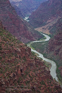 The Green River flowing through Lodore Canyon, Dinosaur National Monument, June 2010.