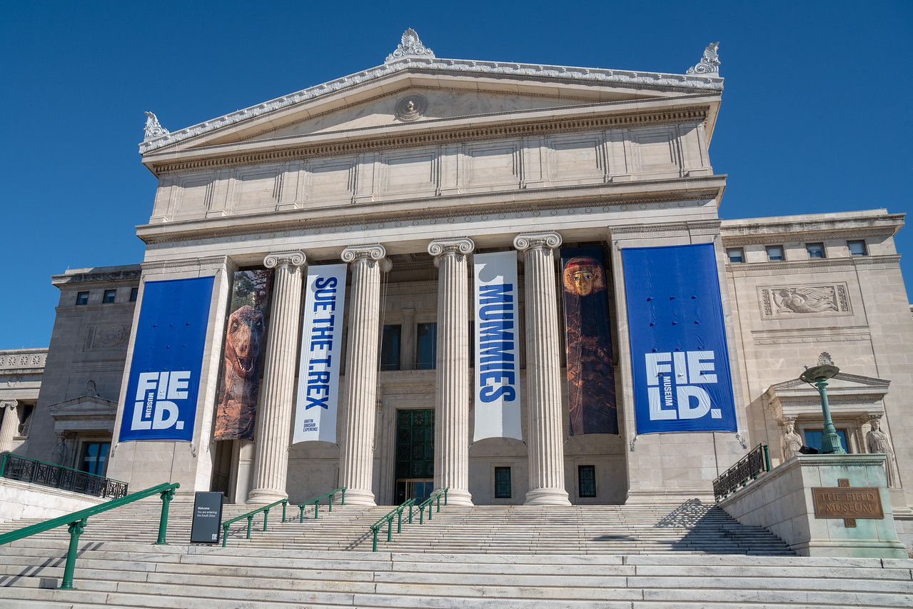 Entrance to the Field Museum, Chicago