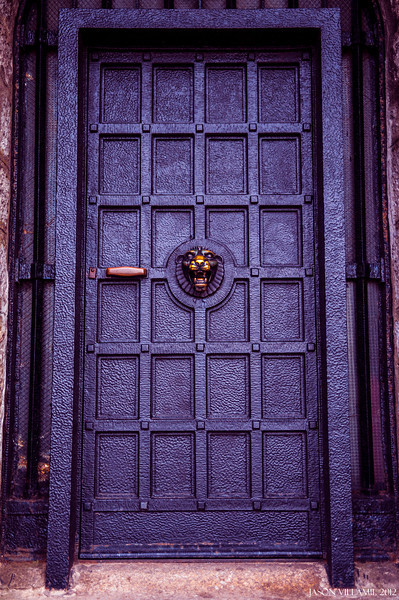 the door with the lion head