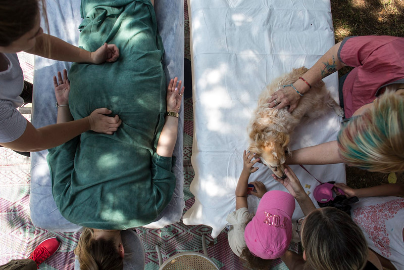 אירועי יום הכלב הבינלאומי בתל אביב
