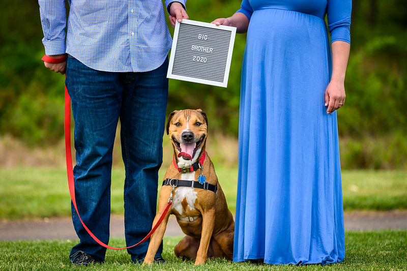NNK - Cara & Jack's Maternity Session - Colonial Park-0002