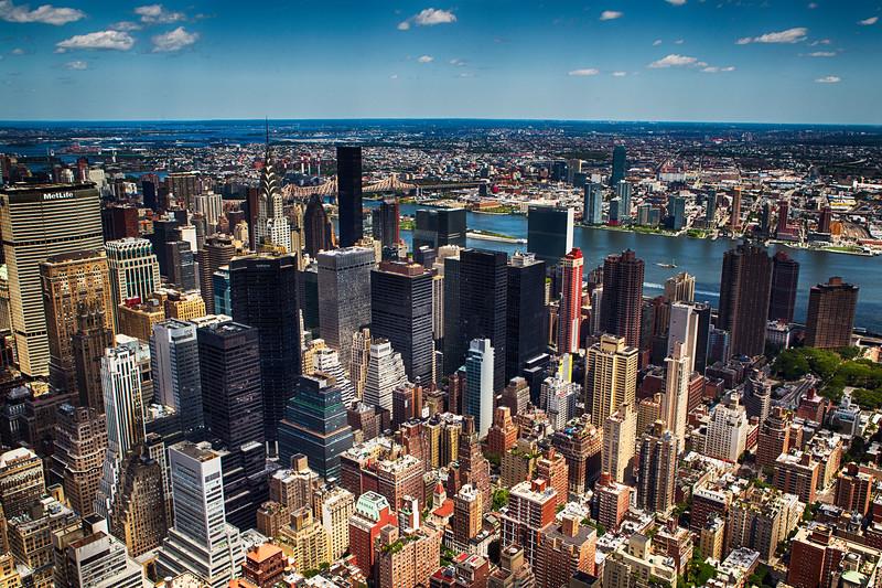 Concrete Jungle - New York