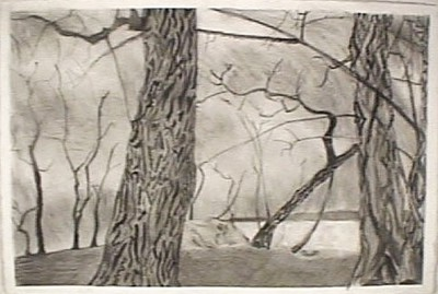 "graphite on paper, 14 x 21"" 2002"