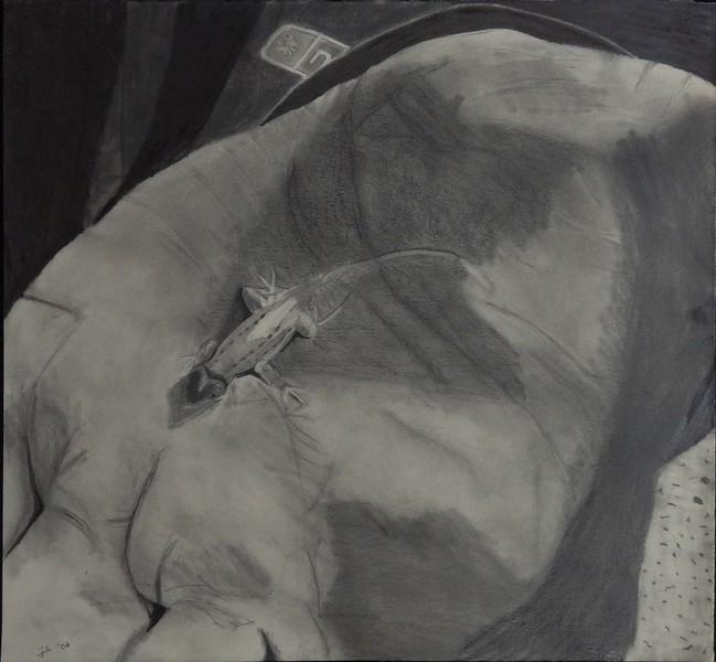 "graphite on paper, 14 x 13"" 2007"
