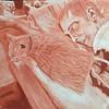 "conte crayon on paper, 16.5 x 14""   2006"