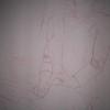"conte crayon on paper, 18 x 24""   2007"