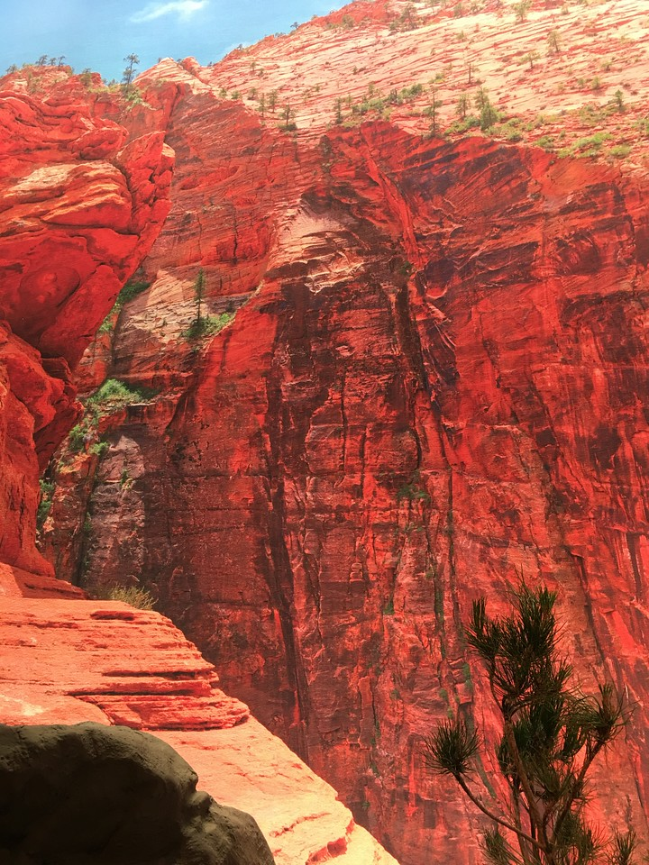 Canyon Overlook #3, Zion National Park, UT (detail)