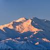 Mt McKinley's Pink Coat - Denali NP, AK