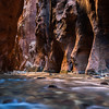 Gateaway to Paradise - Virgin River Narrows lit by the early morning sun, Zion NP, UT