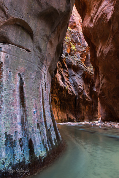 Rainbow Cave - Virgin River Narrows, Zion NP, UT
