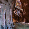 Rainbow Cave - Virgin River Narrows, Zion NP, UT