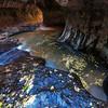 Autumn Spa - Subway, Zion NP, UT