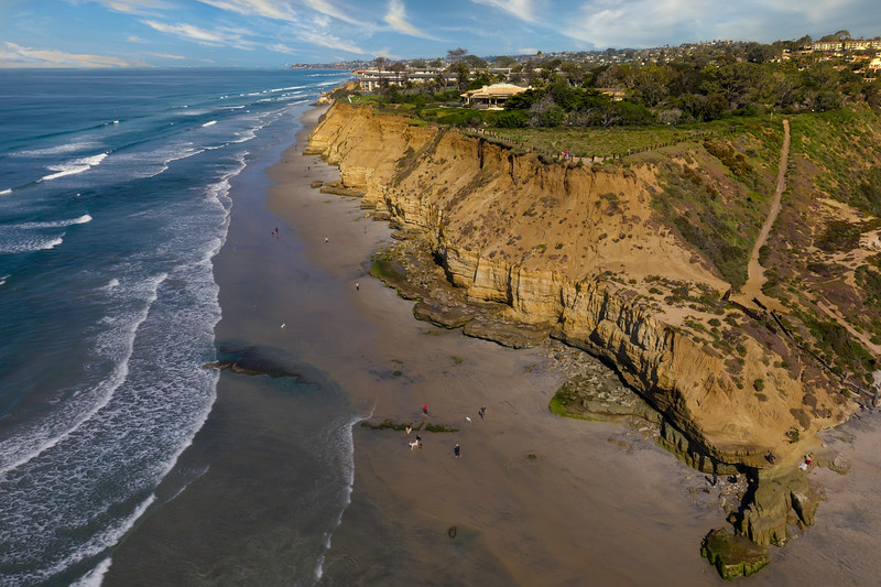 Dog Beach in Del Mar California