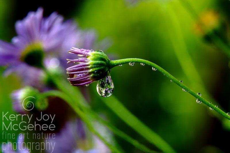Flower with the Raindrop Earring