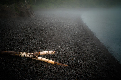 Fog Log