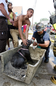 Joseph Lopez, helps Hector Santiago, a Lawrence firefighter, with his dog Bella who was rescued from a fire on Arlington Street in Lawrence.