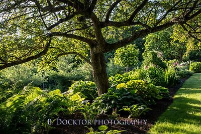 Spencertown Academy Hidden Gardens