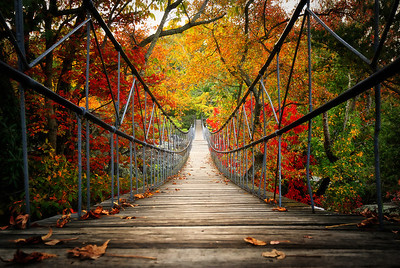 Crossing The Fall LineRock City, Georgia  I'd never been to Rock City Before.  Fall colors: sublime. Dose of magic: perfection Desire to visit again: absolute.