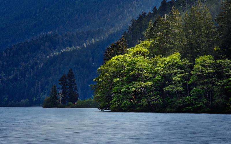 At Lake Crescent, Washington... the light likes to play amongst the treetops. So do I... :D
